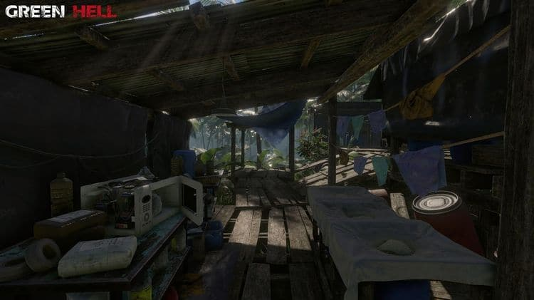 Green Hell gameplay screen